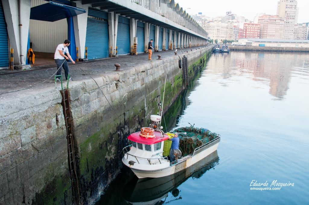 Llegando al puerto