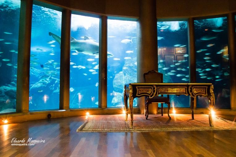 El gabinete del Capitán Nemo